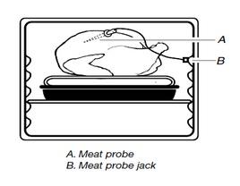 Meat Probe.jpg